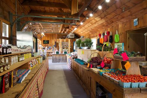 Home Hamptons Fresh Market Farm Stand Apple Picking